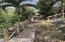After hurricanes - pathway to caretaker's cottage