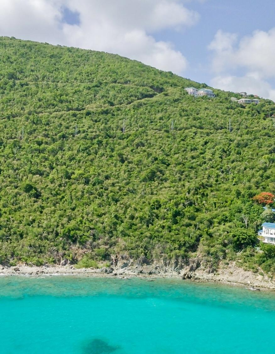 RE/MAX real estate, US Virgin Islands, Rendezvous & Ditleff, New Listing  Land  Rendezvous  Ditleff