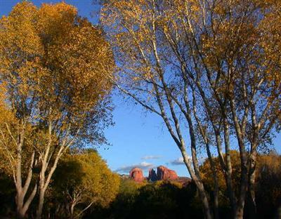 Red Rock Loop Sedona, AZ 86336