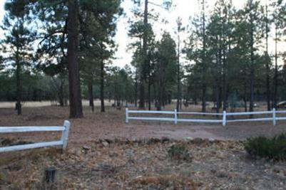 1599 Bear Track Trail Happy Jack, AZ 86024