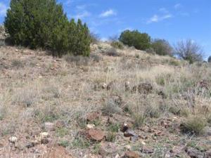 4820 N Totem Pole Pass, 11, Rimrock, AZ 86335