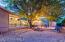 Backyard twilight