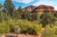 Nothing between the property and Coconino National Forest. Trails from property.