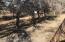 3708 E Ripple Rd, Camp Verde, AZ 86322