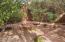 425 Acacia Drive, Sedona, AZ 86336