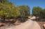 99 Los Coyotes Trail