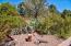 Cactus Garden with Rock Art = low maintenance.