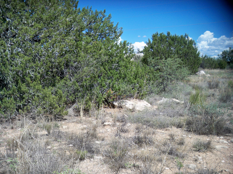 4820 E Smoke Signal Rimrock, AZ 86335