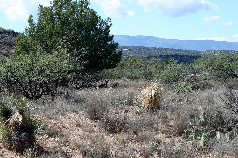 4435 E Navajo Rimrock, AZ 86335