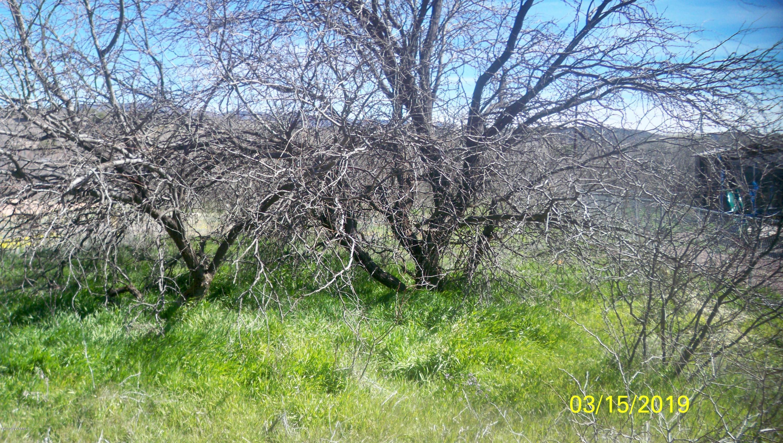 4265 E Cliffside Rimrock, AZ 86335