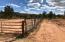 Happy horse spaces