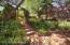 Pathways through the gardens
