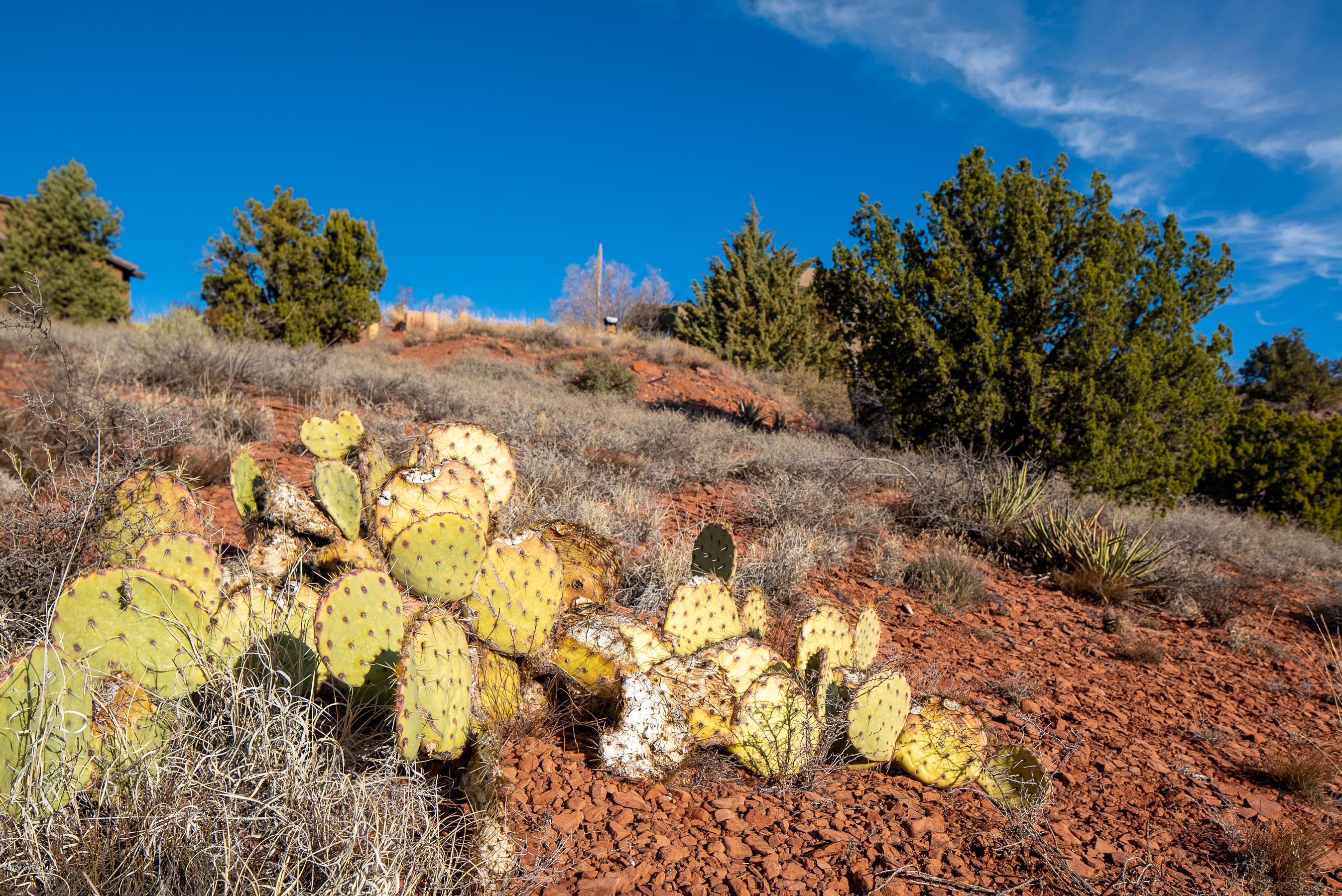 25 Rosemary UNIT Lot 40 Sedona, AZ 86336