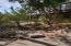 195 Juniper Drive, Sedona, AZ 86336