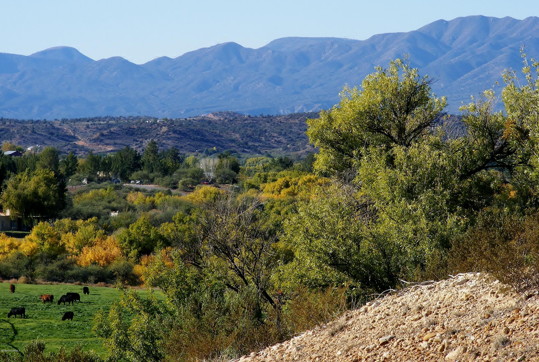 11104 E Majestic Vista Cornville, AZ 86325