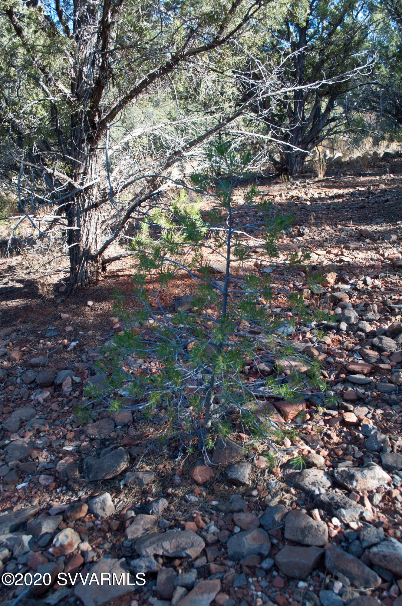 55 Forest Circle Sedona, AZ 86336