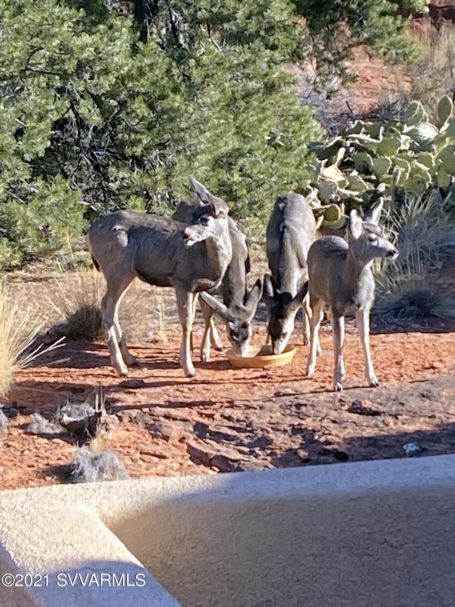123 Devils Kitchen Drive Sedona, AZ 86351