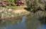 Creek at lawn level