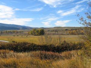 Eagle Ridge Trail, (Tract 8)