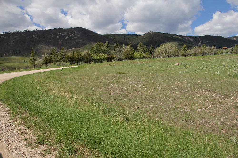 Red Poll Lane, Big Horn, Wyoming 82833, ,Building Site,For Sale,Red Poll,13-606