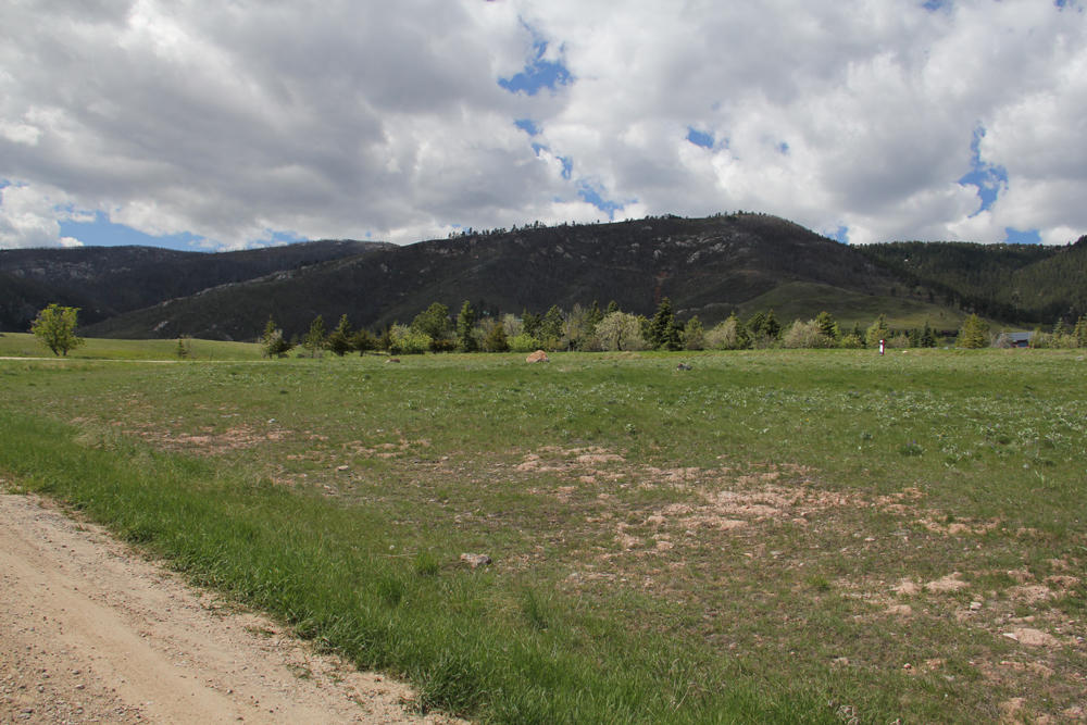 Red Poll Lane, Big Horn, Wyoming 82833, ,Building Site,For Sale,Red Poll,12-246