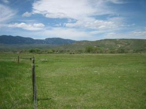 Sharptailed Road, Sheridan, WY 82801