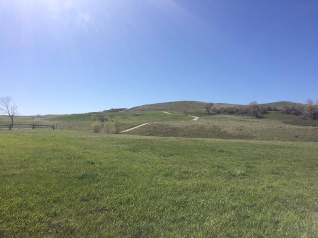 Dornoch Drive, Sheridan, Wyoming 82801, ,Building Site,For Sale,Dornoch,17-463