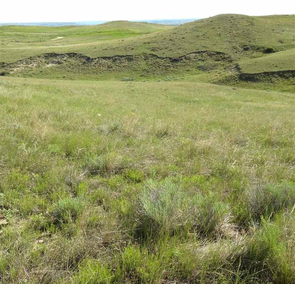 Tract 2 TBD, Buffalo, Wyoming 82834, ,Building Site,For Sale,TBD,17-852