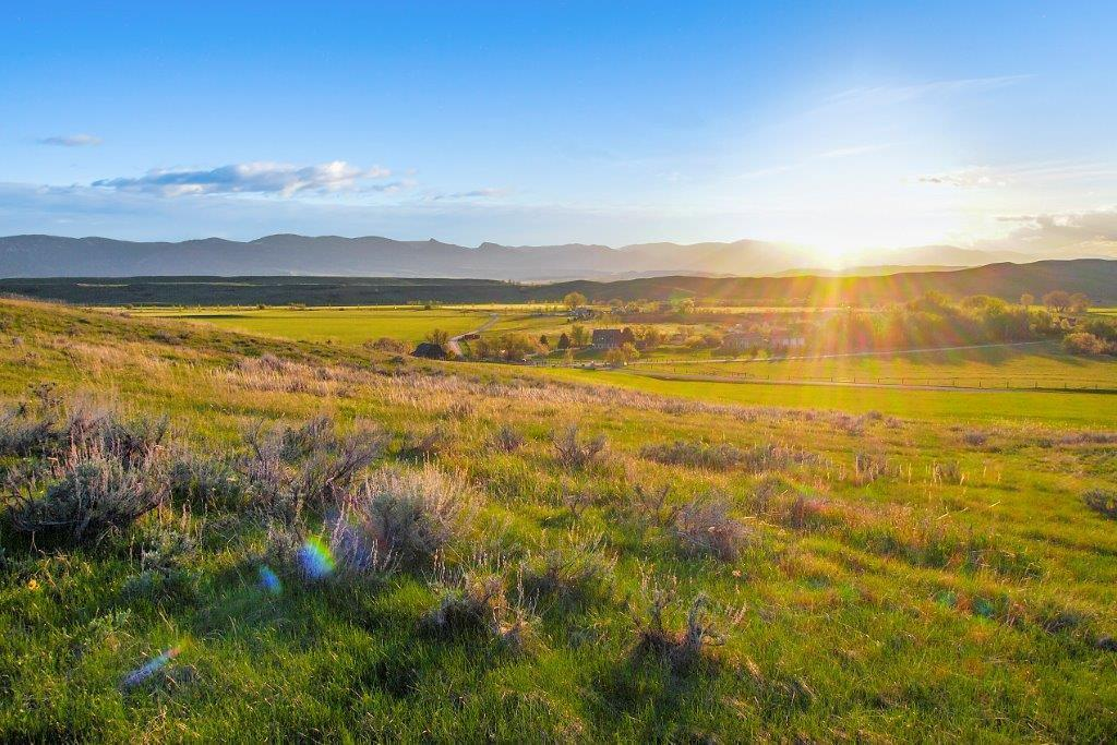 Lot 13 Shepards Road, Big Horn, Wyoming 82833, ,Building Site,For Sale,Shepards,18-473