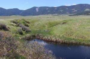 Eagle Ridge Trail