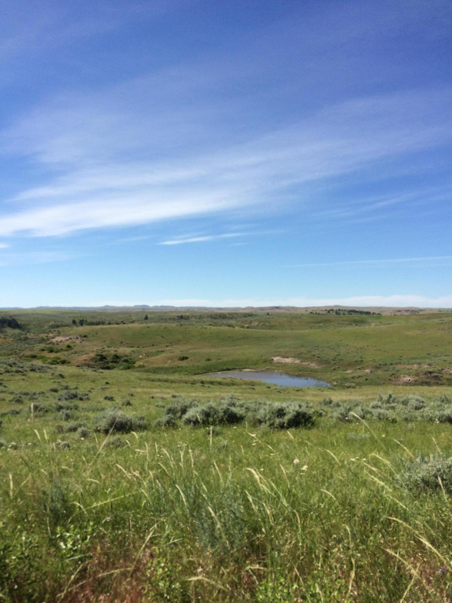 Beatty Gulch Road, Sheridan, Wyoming 82801, ,Ranch-Land,For Sale,Beatty Gulch,18-631