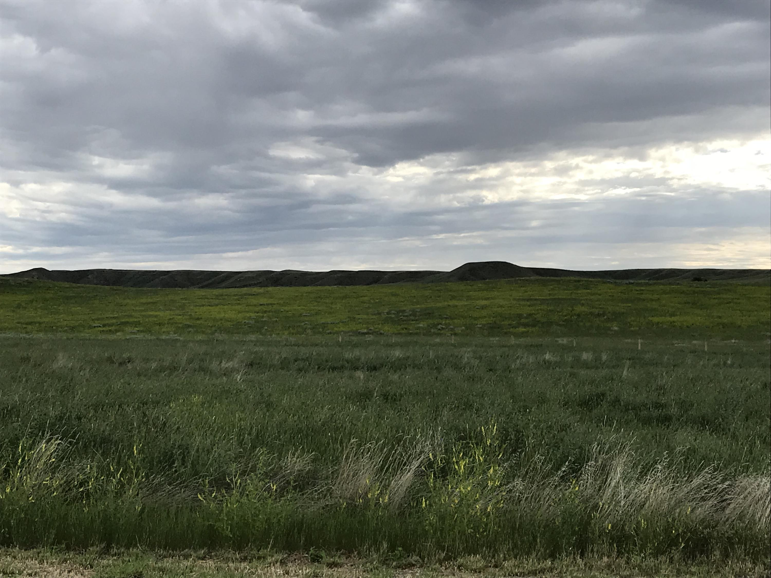 Lot 6 TBD, Buffalo, Wyoming 82834, ,Building Site,For Sale,TBD,17-701
