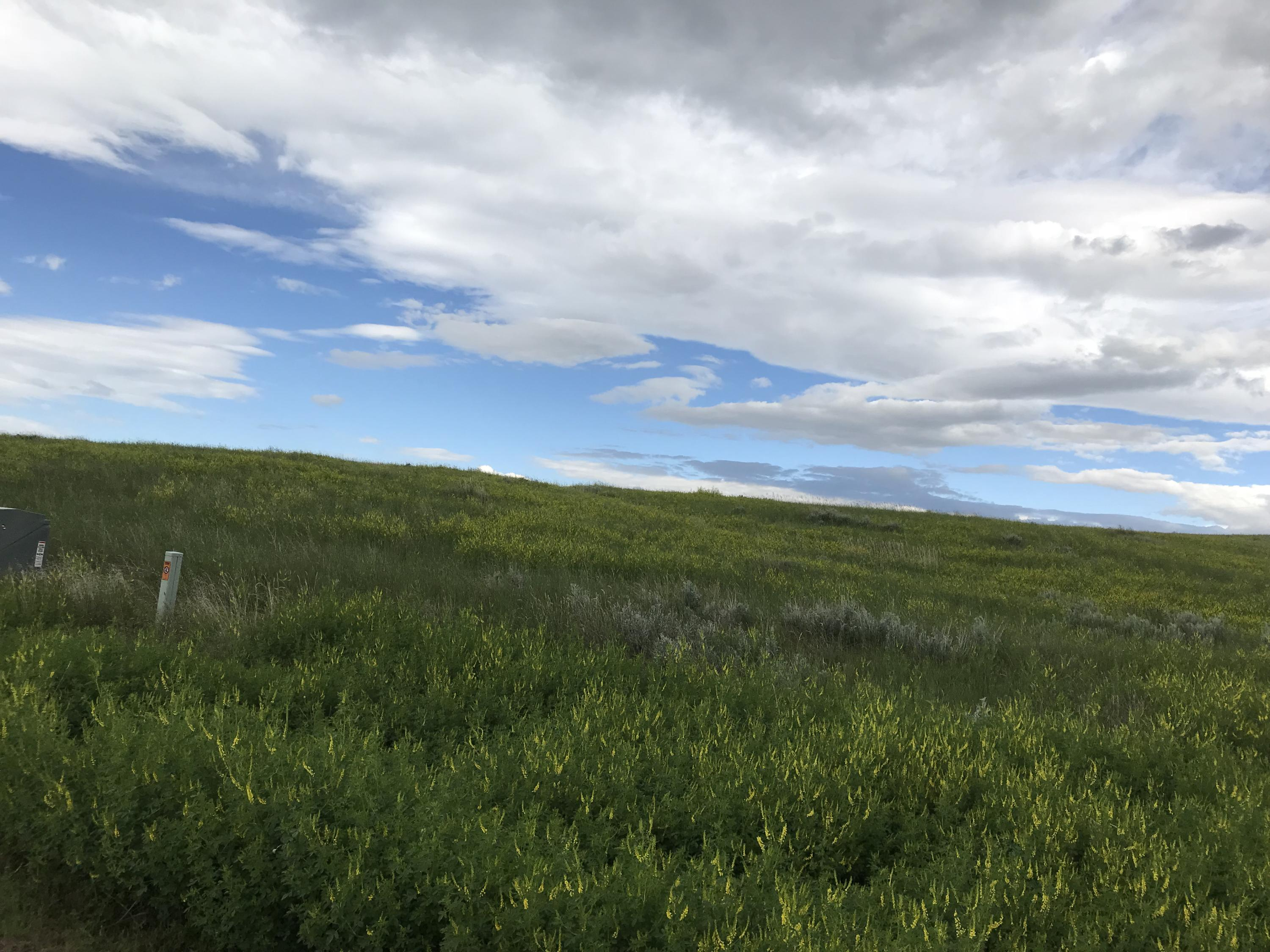 Lot 15 TBD, Buffalo, Wyoming 82834, ,Building Site,For Sale,TBD,17-716