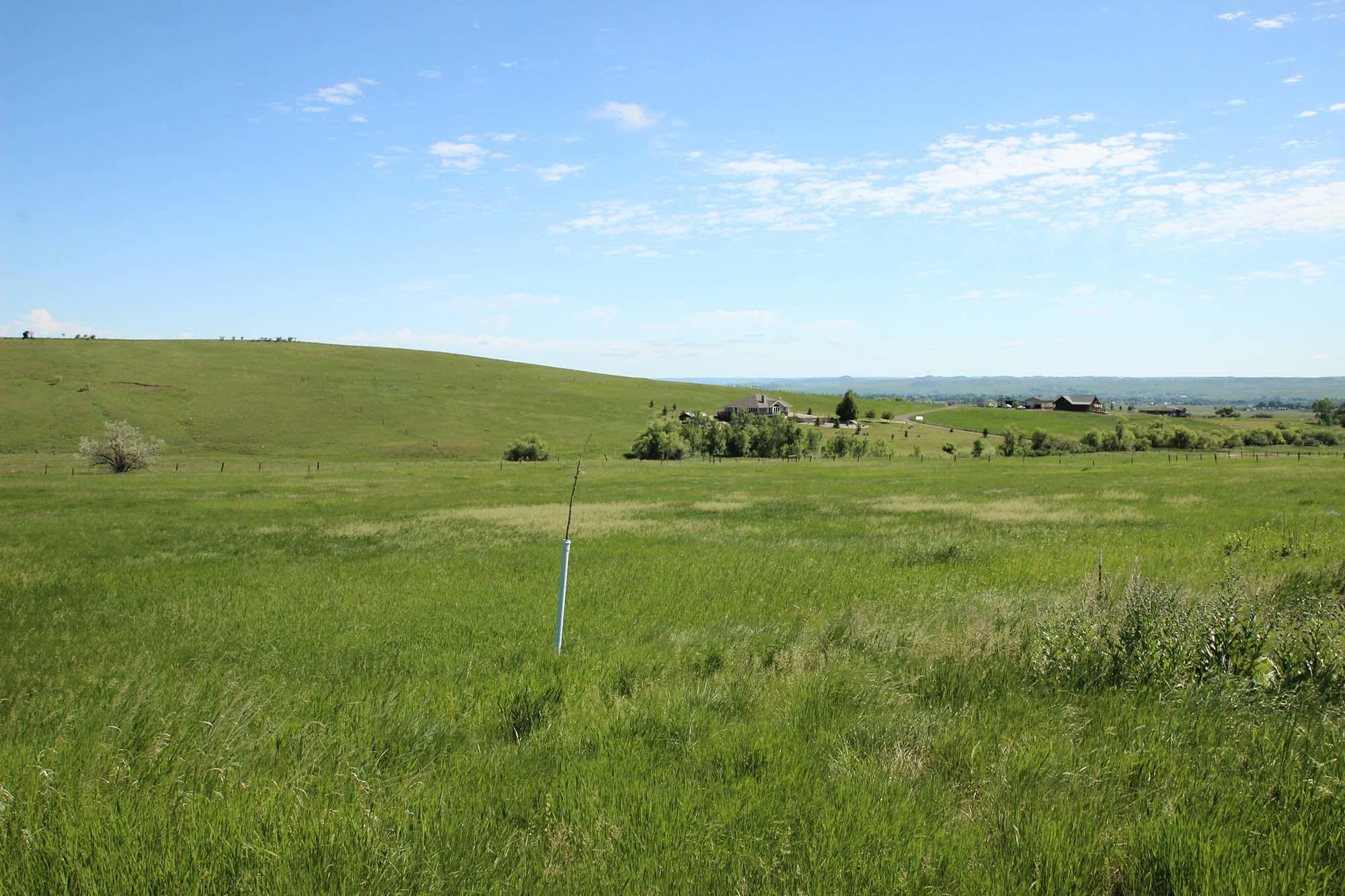 Peralta Drive, Big Horn, Wyoming 82833, ,Building Site,For Sale,Peralta,18-722