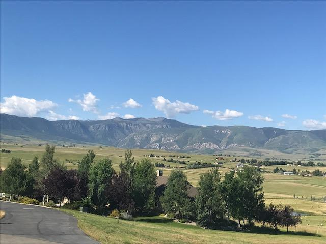 TBD Turnberry Drive, Sheridan, Wyoming 82801, ,Building Site,For Sale,Turnberry,18-761