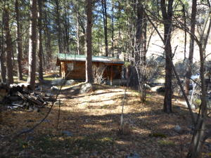 Cabin tucked in among the Ponderosa Pines