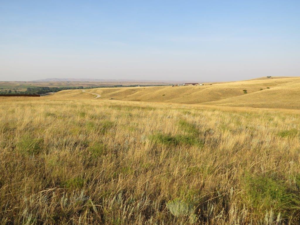 Eagle Ridge Trail, Dayton, Wyoming 82836, ,Building Site,For Sale,Eagle Ridge,19-123