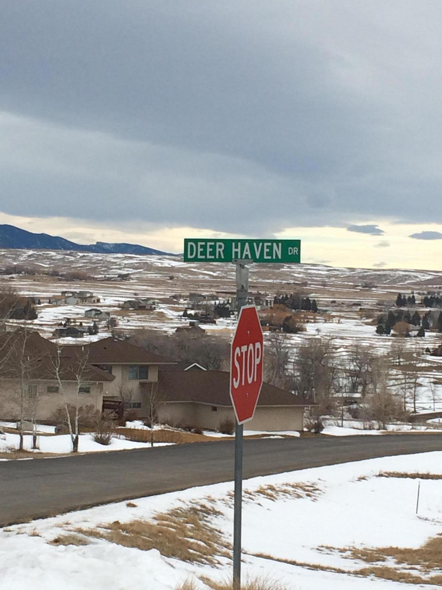 Deer Haven Drive, Sheridan, Wyoming 82801, ,Building Site,For Sale,Deer Haven,19-121