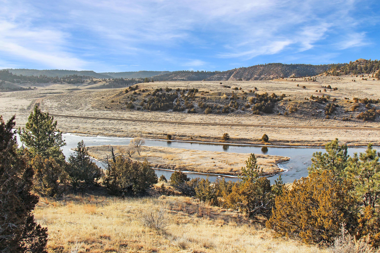 TBD Tongue River Road, Birney, Montana 59012, 1 Bedroom Bedrooms, ,Ranch,For Sale,Tongue River,19-180