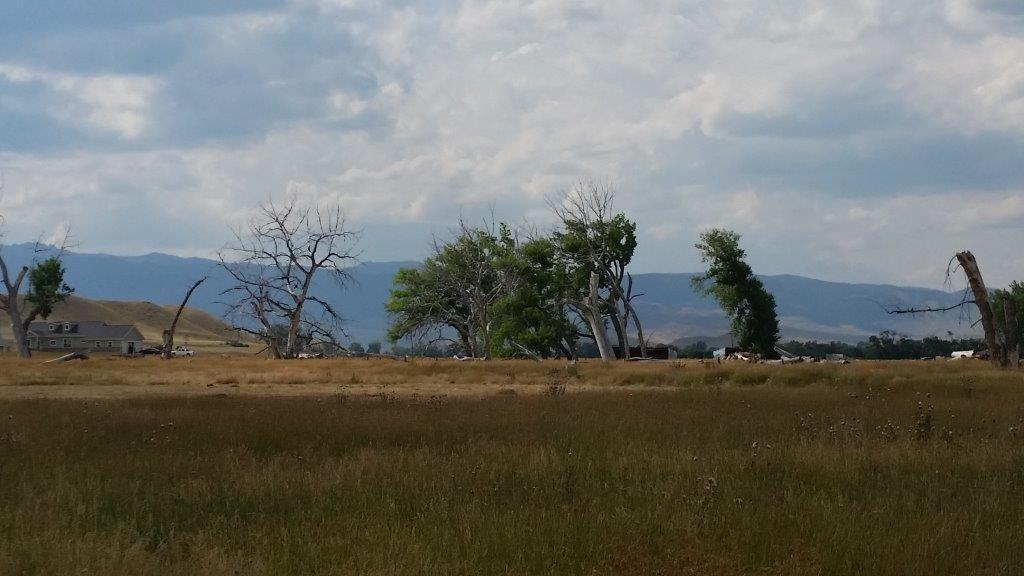 TBD Sand Creek Drive, Buffalo, Wyoming 82834, ,Building Site,For Sale,Sand Creek,19-253