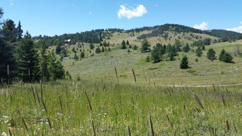 Red Grade Road, Big Horn, Wyoming 82833, ,Building Site,For Sale,Red Grade,19-440