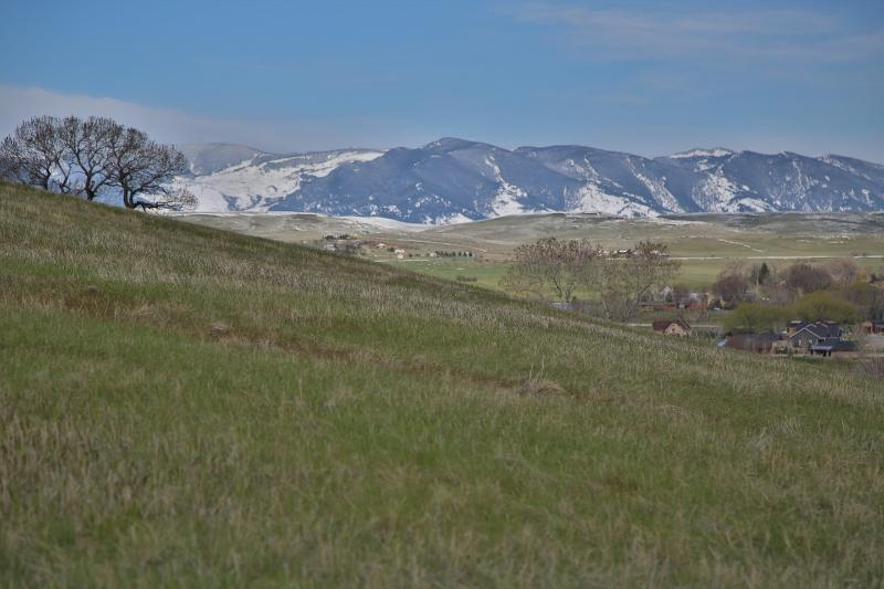 TBD Eagle Ridge Drive, Sheridan, Wyoming 82801, ,Building Site,For Sale,Eagle Ridge,19-396