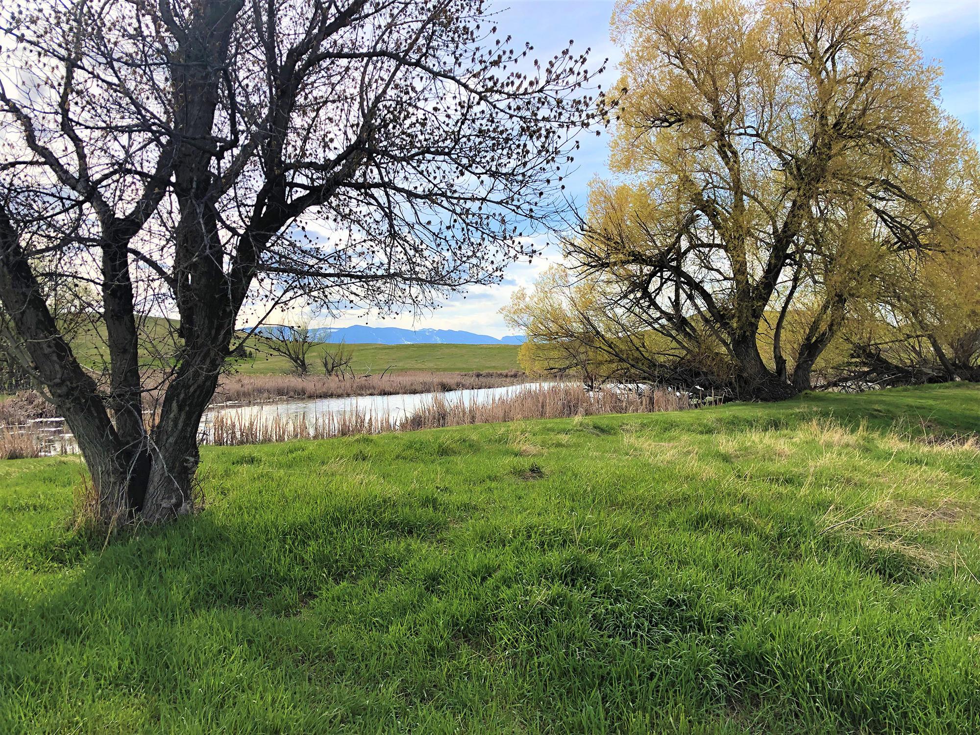 185/183 Bird Farm Road, Sheridan, Wyoming 82801, 3 Bedrooms Bedrooms, ,2 BathroomsBathrooms,Ranch,For Sale,Bird Farm,19-405