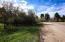 Fish Hatchery Road, Story, WY 82842