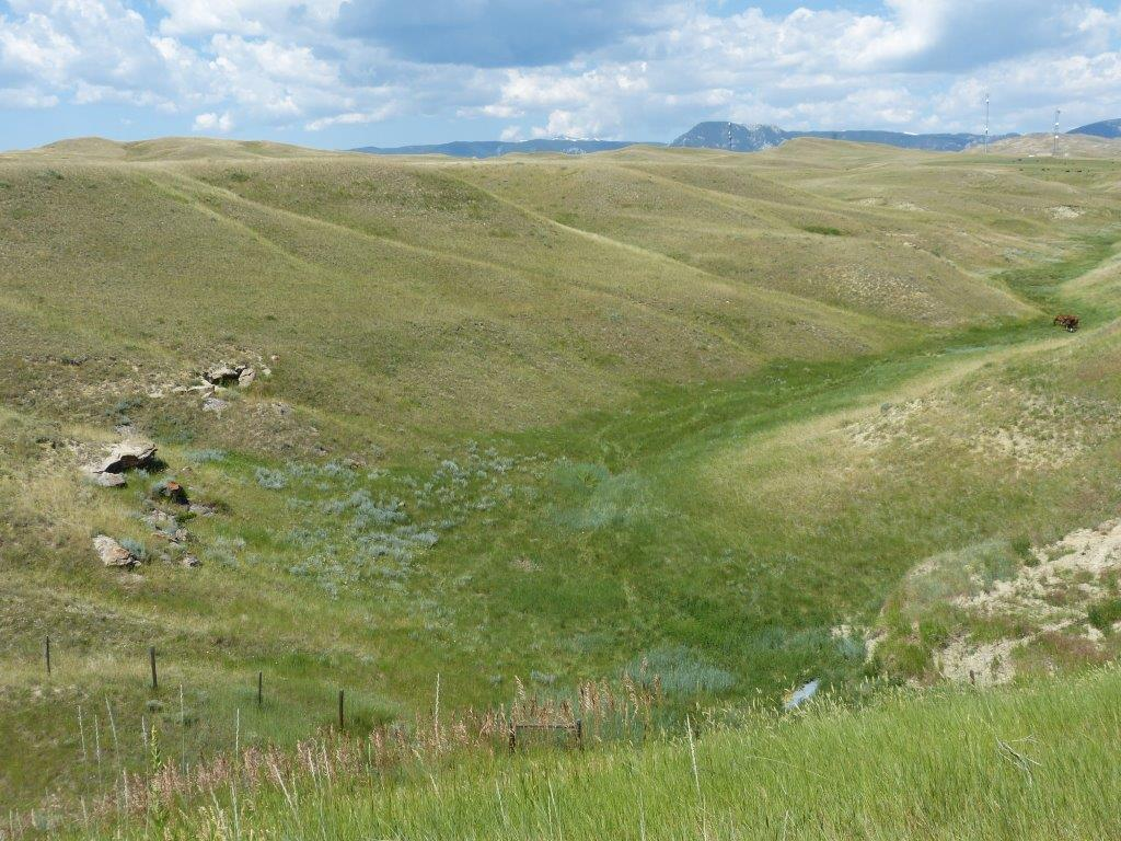 Lot 1 S Elsom Ranch, Buffalo, Wyoming 82834, ,Ranch-Land,For Sale,Elsom Ranch,19-471