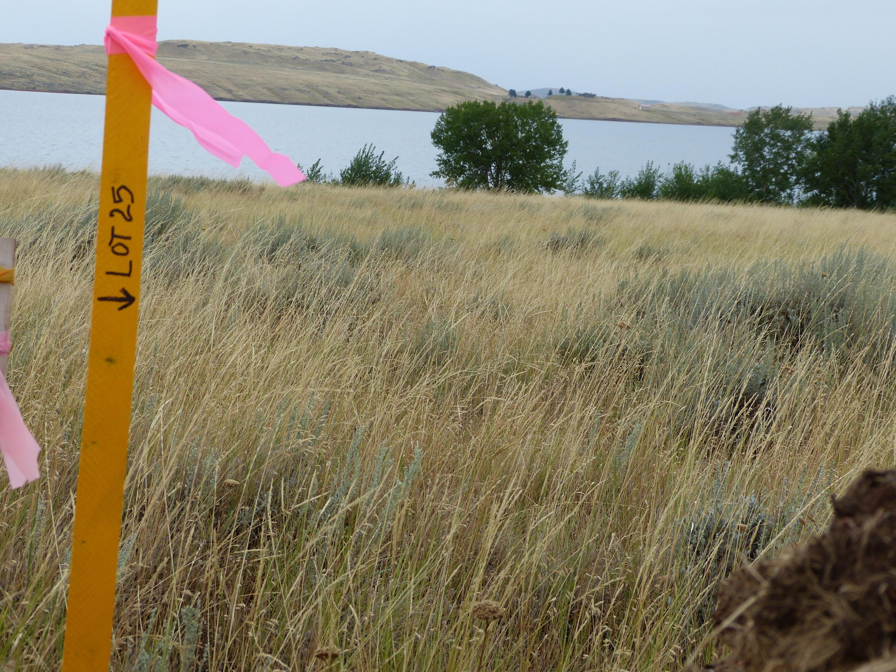 Lot 25 Promontory Way, Buffalo, Wyoming 82832, ,Building Site,For Sale,Promontory,19-527