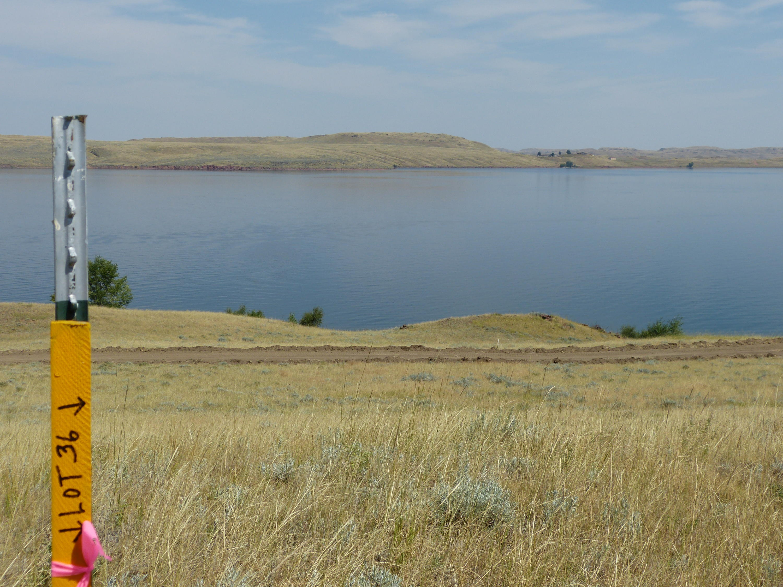 Lot 35 Shoreline Drive, Buffalo, Wyoming 82834, ,Building Site,For Sale,Shoreline,19-530