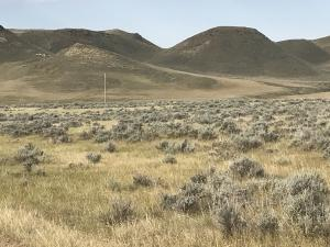 Lot 12 TW Road, Buffalo, WY 82834