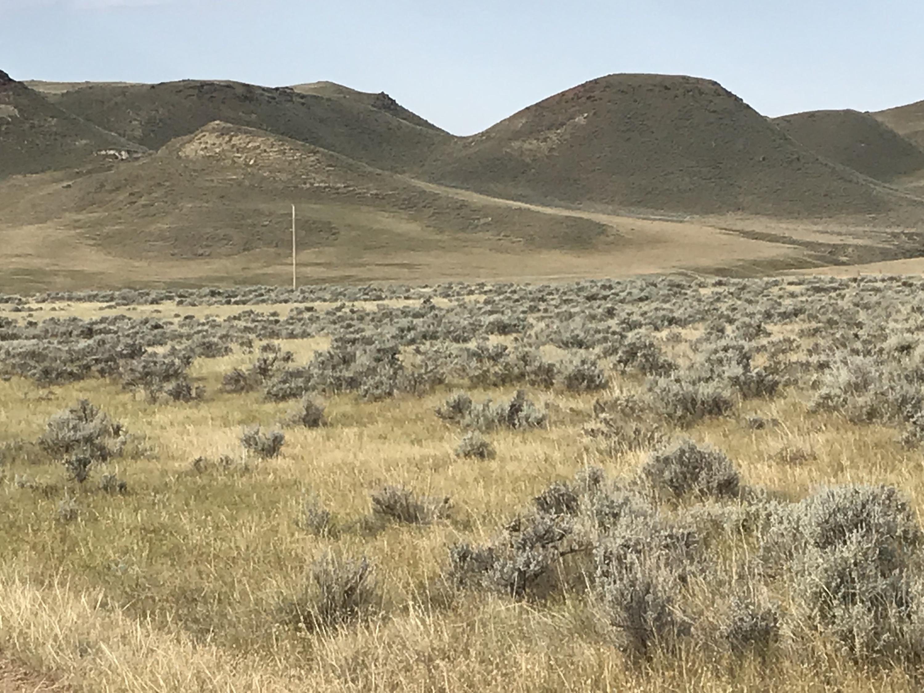 Lot 3 TW Road, Buffalo, Wyoming 82834, ,Building Site,For Sale,TW,19-1047