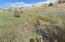 SaddleCrest Drive, (Lot 33), Sheridan, WY 82801